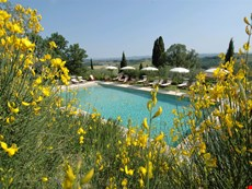 Photo 2 of Reviews of Pleasant Tuscan Apartment on Large Hillside Estate